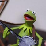 """Muppets Select"" シリーズ1 カーミット&ロビン、ビーンバニーの写真レビュー"