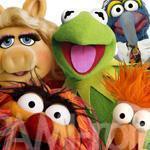 ザ・マペッツ/The Muppets 特集(3)ザ・マペッツ素朴な疑問集