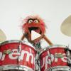 Supremeとマペッツのコラボ再び。ドラムセットのプロモーション映像にアニマルが登場